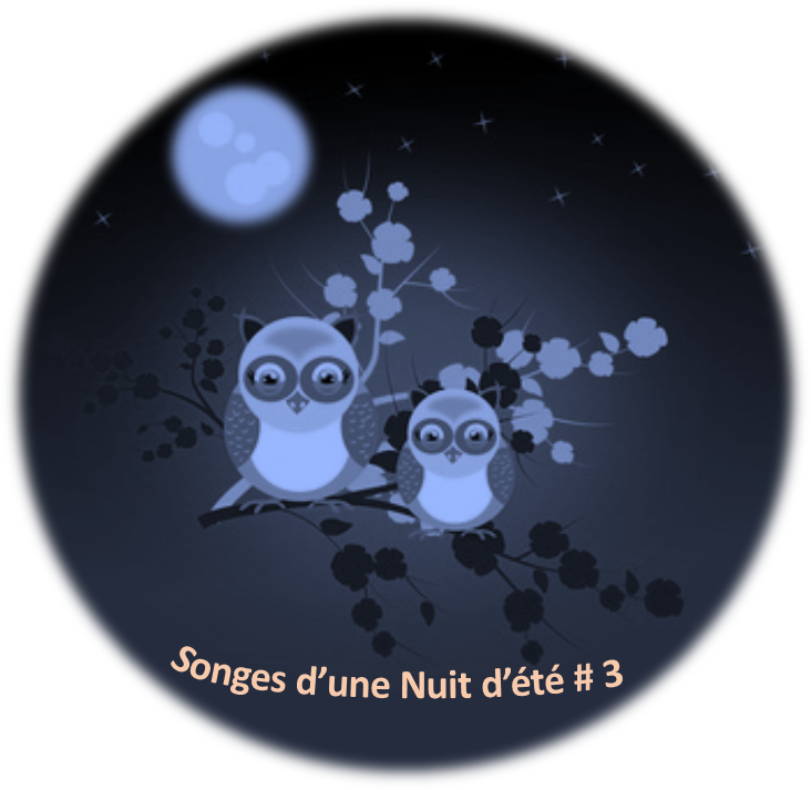 Songes Nuit Eté MultiMarques
